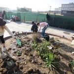 Guerrilla Gardening, il giardinaggio contro il degrado cittadino
