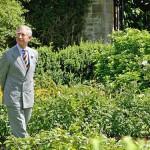 La teoria del Principe Carlo sul parlare alle piante