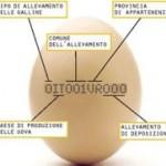 Etichetta delle uova: attenzione alla prima cifra