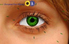 L'home page del sito dei Greens di Strasburgo