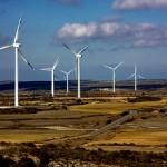Attacco Coldiretti: l'energia eolica rovina il territorio
