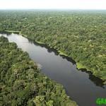 La Nike s'impegna a salvare la Foresta Amazzonica