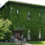 Semplici consigli per una casa ecologica