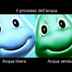 Video: acqua libera vs acqua in bottiglia