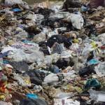 Rapporto Ecomafia 2010: crescono ancora i reati ambientali