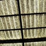 Eternit free: pannelli fotovoltaici al posto dell'amianto