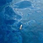 Marea nera: allarme rientrato, restano i dubbi