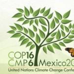 Conferenza di Cancun: risultati migliori del previsto