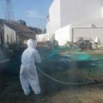"""Greenpeace avverte: """"Fukushima è fuori controllo"""""""